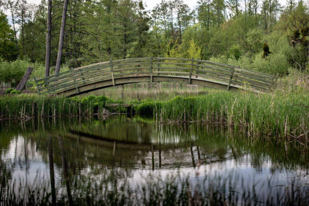 park i natura Komierowo