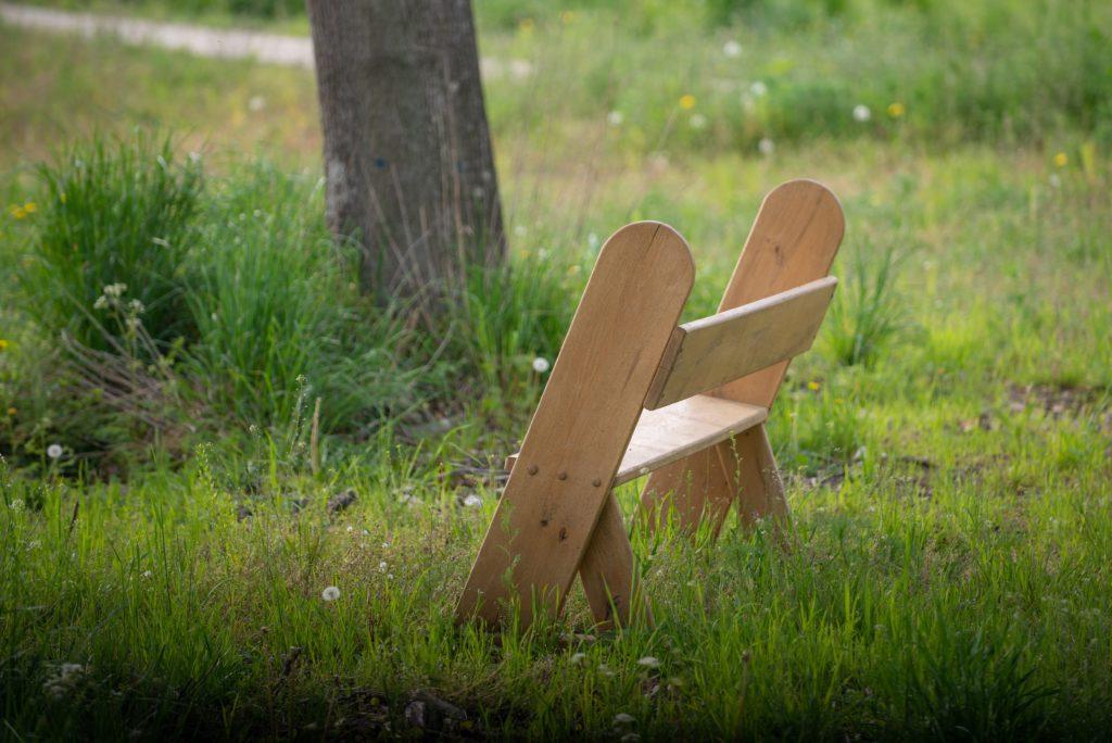 park w Komierowie